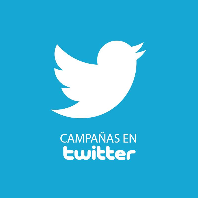 campañas-de-publicidad-en-twitter
